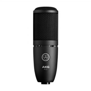 Akg perception p120 img