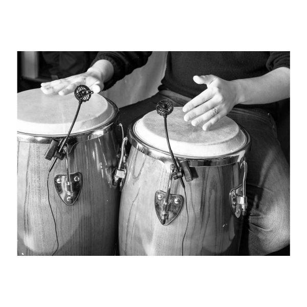 Prodipe pl21 percussion gallery 2